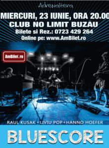 Concert Bluescore @Buzau